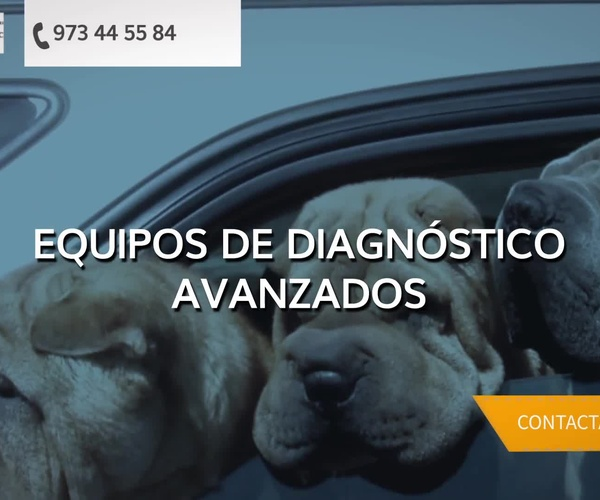 Veterinarios en Balaguer | Centre Veterinari Montsec