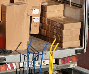Todos los productos y servicios de Agentes de aduanas: Trini, S.L.