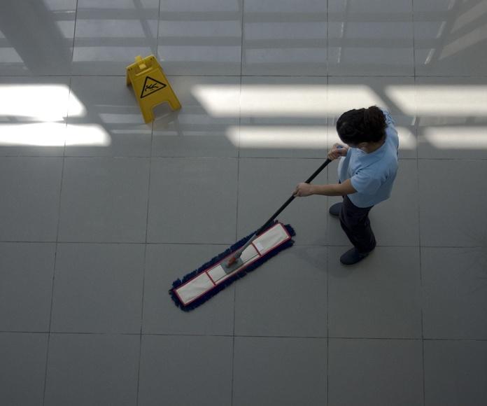 Limpieza de colegios: Servicios de El Experto