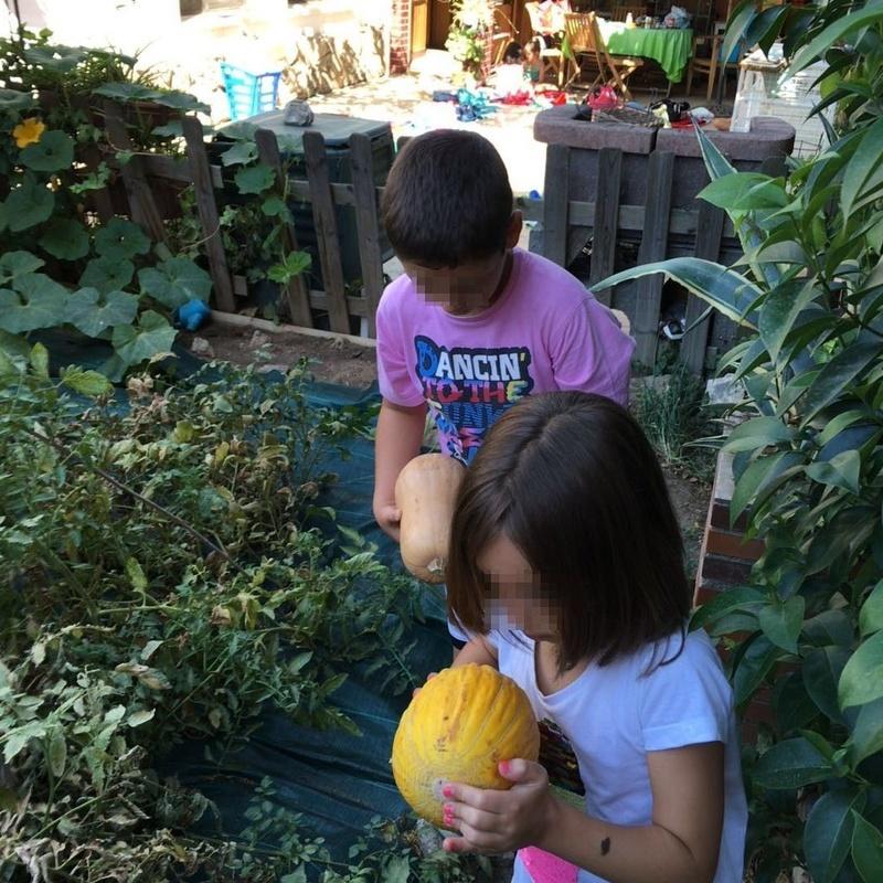 Un día en nuestra huerta: Actividades de Como mola