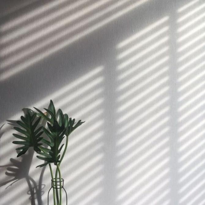 Cómo las persianas te ayudan a ahorrar energía
