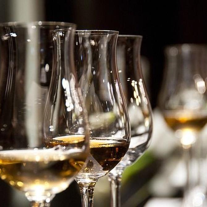 Beneficios, propiedades y mitos del vino blanco