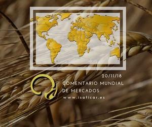 Informe internacional de mercados 20.11.18