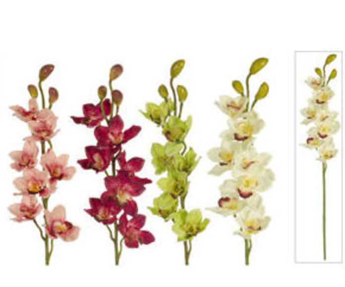 Or.Cimbidium X10 Tela
