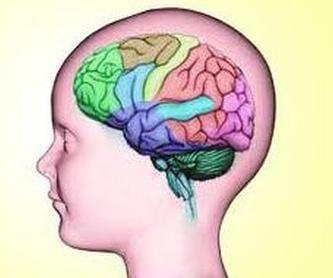 REHABILITACION NEUROPSICOLOGICA : SERVICIOS  de NeuroKid