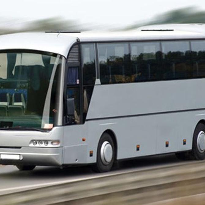 Recorre los rincones turísticos de Granada en autobús