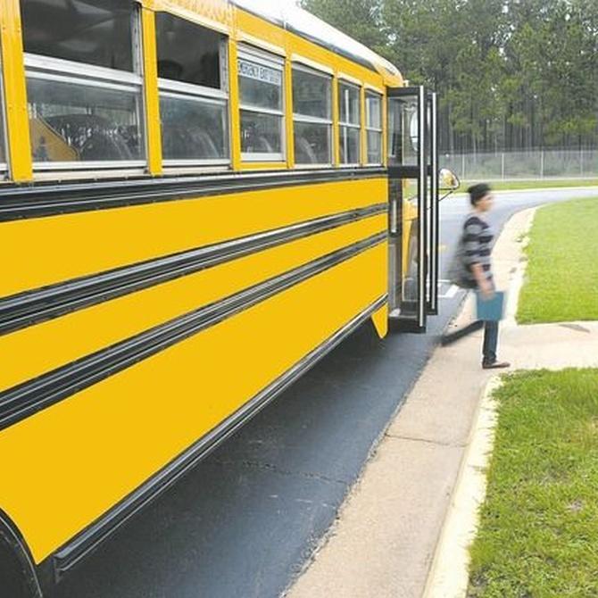 Medidas para servicios de transporte para colegios