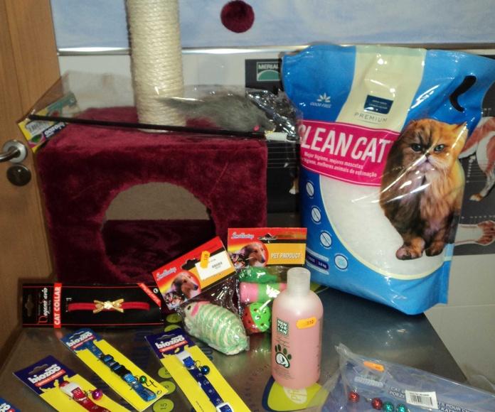 Juegos y complementos para los felinos: Catálogo de Clínica Veterinaria Rocafort