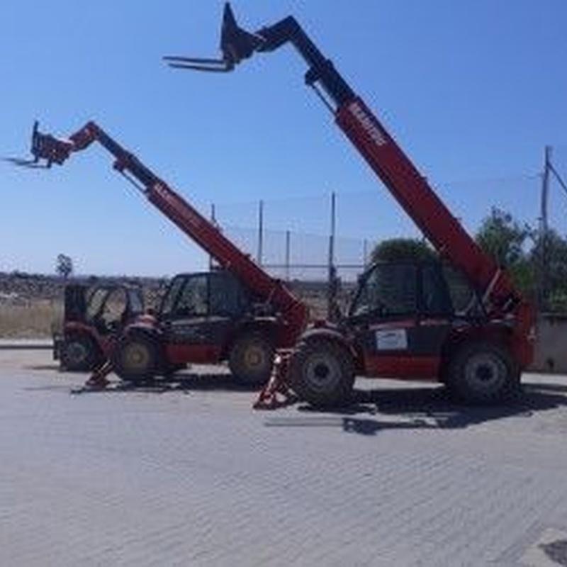 Camión Grúa y con grúa telescópica: Productos de Materiales de Construcción Emilio
