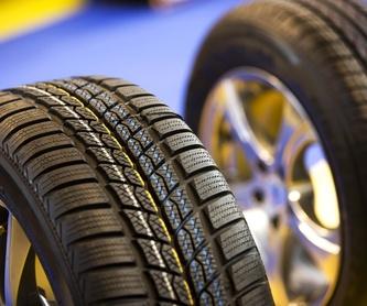Mecánica general: Servicios de CTS Motor Sport