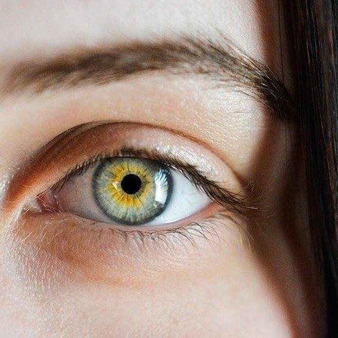 Cuál es el mejor tratamiento para definir y dar forma a las cejas