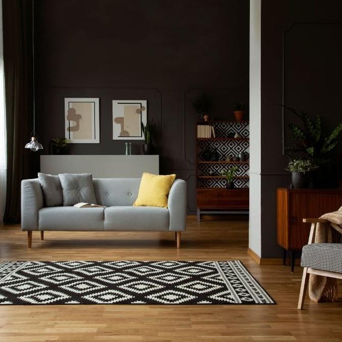 ¿Están las alfombras de tu casa realmente limpias?