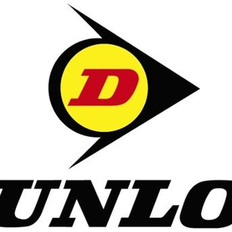 Venta Neumáticos DUNLOP: Neumáticos Primeras Marcas  de Big Sur Neumáticos