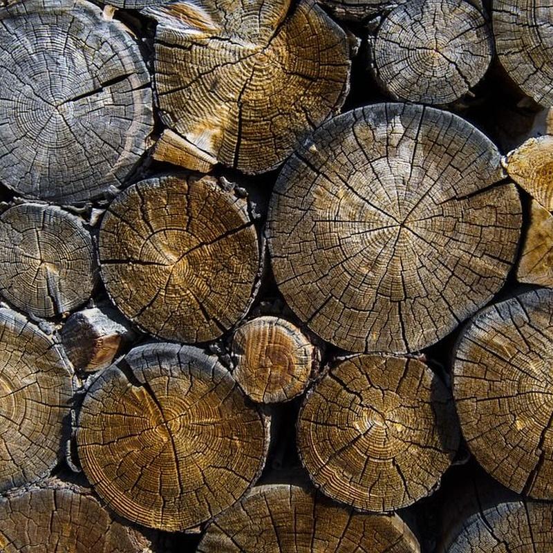 Madera de pino: Servicios de Maderas Familia Rupérez