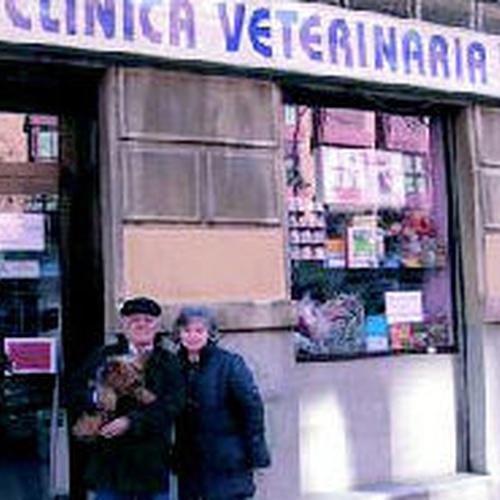 Cirugía veterinaria en Pirámides