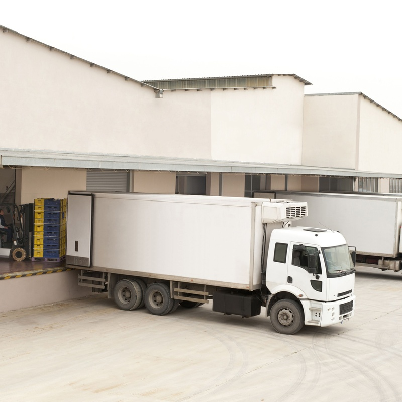 Mercancías de frío: Servicios de Distribuciones Nieves