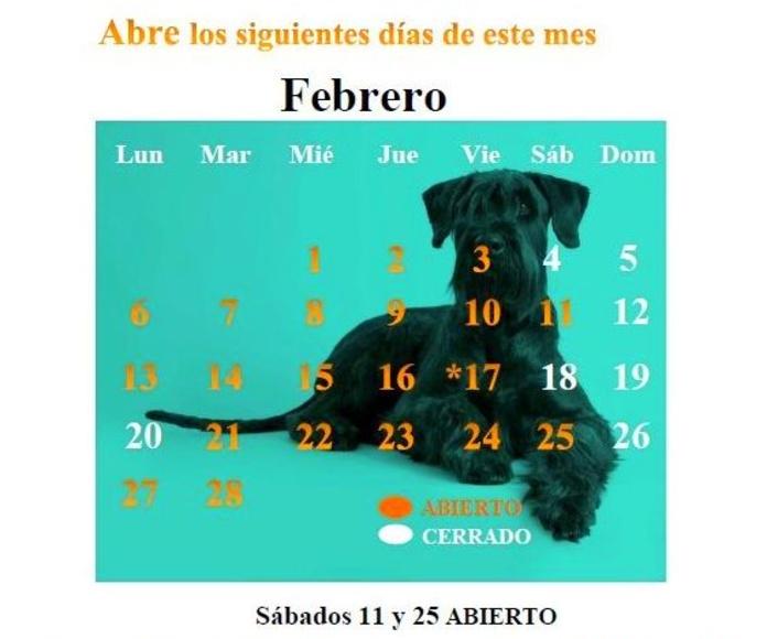 CALENDARIO FEB 17