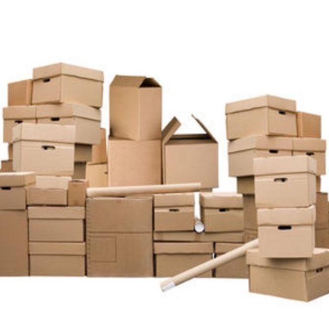 ¿Cómo tiene que ser el cartón para guardar alimentos?