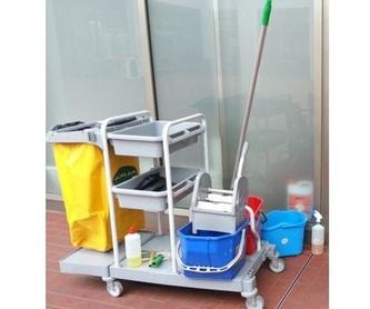 Limpieza de pequeñas y grandes superficies: Servicios de Colombiana de limpiezas
