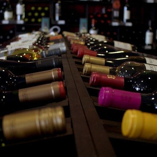 ¿Conoces los diferentes tipos de vino?