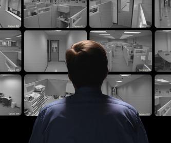 Interfonos, porteros y videoporteros: Servicios de Dodicom Electrónica