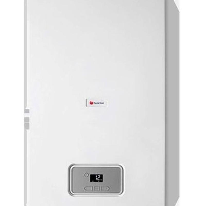 Thelia Condens F25 ERP: Productos de Cold & Heat Soluciones Energéticas