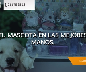 Peluquería canina en Torrejón de Ardoz