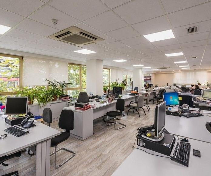 Oficinas. Colegio de Abogados oficinas: Proyectos Integrales de comtres