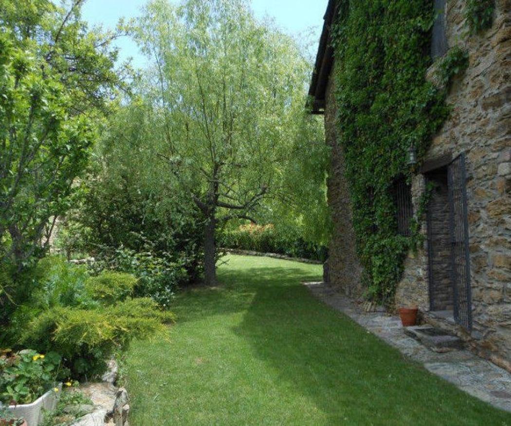 El clima y tu jardín