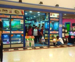 Tienda de animales en Erandio