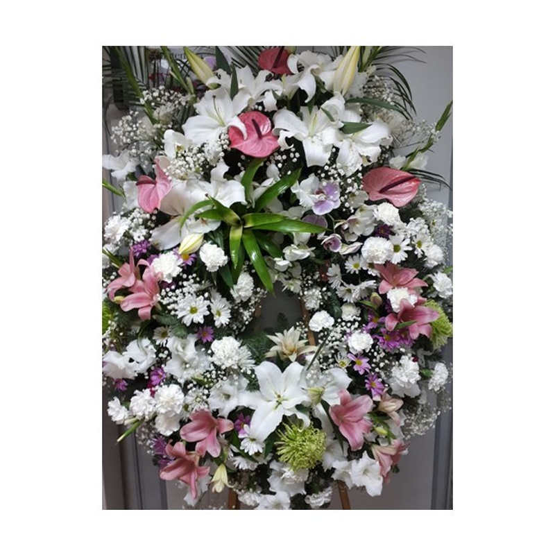 Funerarios: Catálogo de Flores Maranta