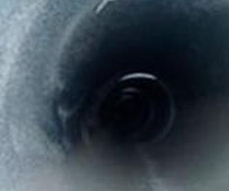 Inspección de redes y localización de averías en tuberías-Cámaras TV: Servicios de Desatascos Mario López
