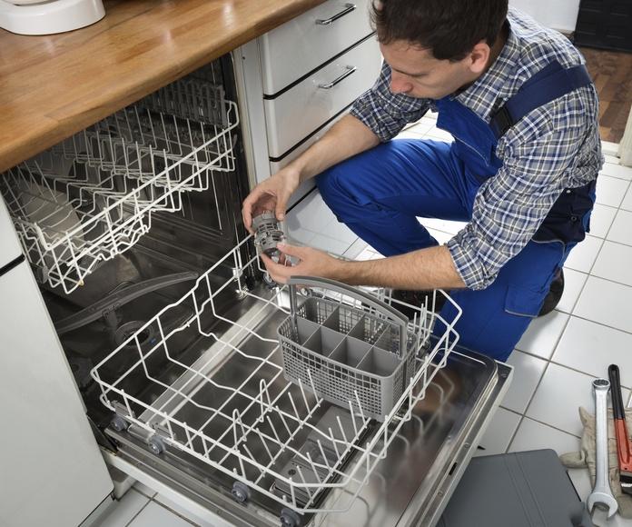 Reparación de lavavajillas: Reparaciones de Reyvo
