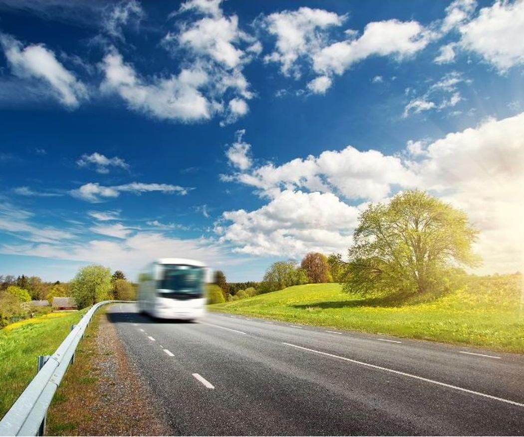 Excursiones y buses