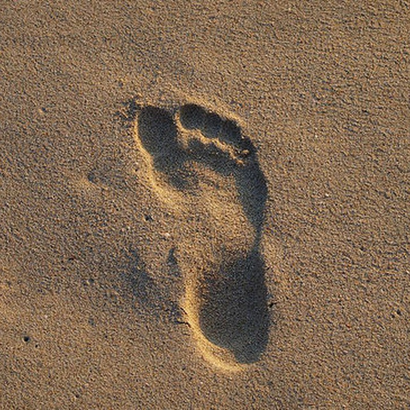 Estudio de la pisada: Servicios de Clínica del Pie Lario