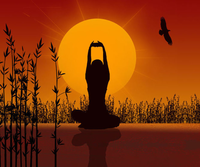 Yoga bienestar