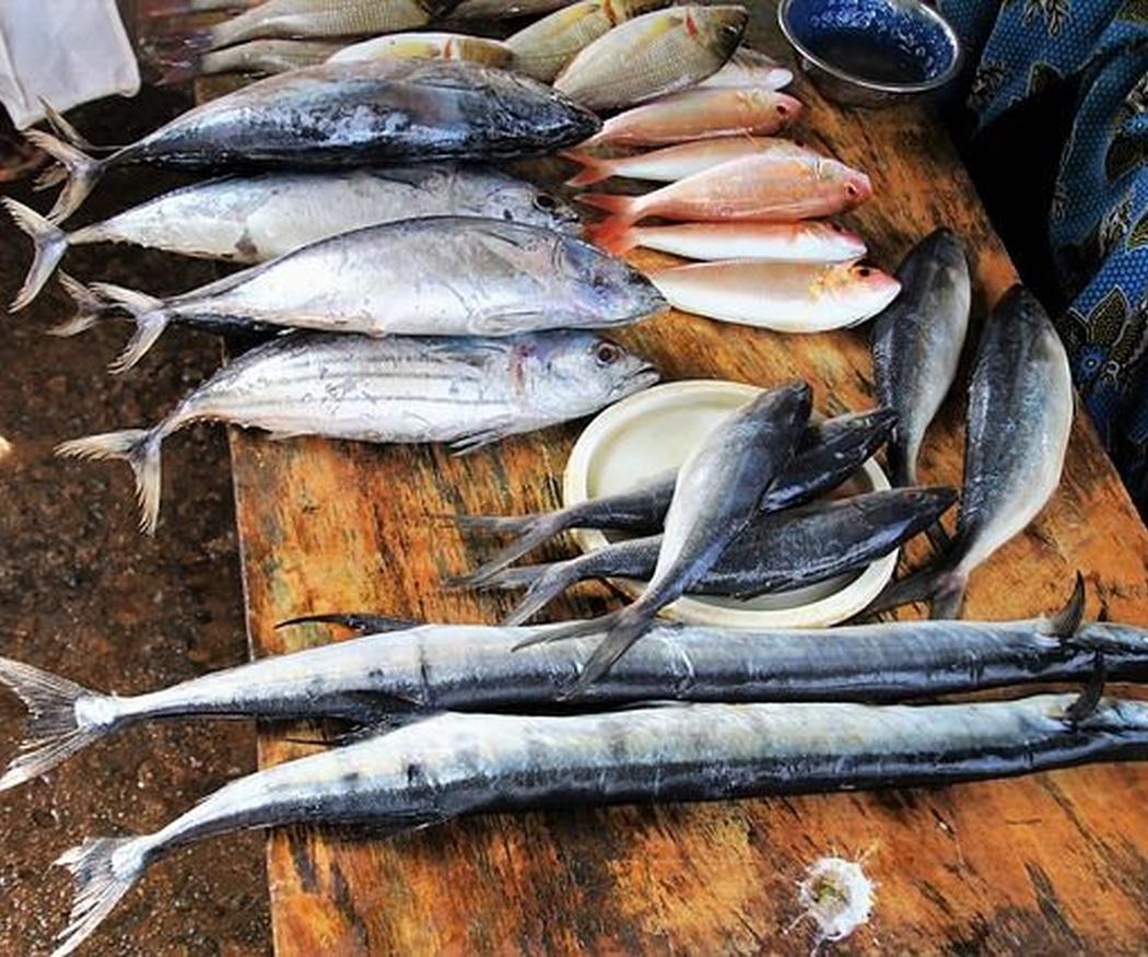 Algunas formas de cocinar pescado