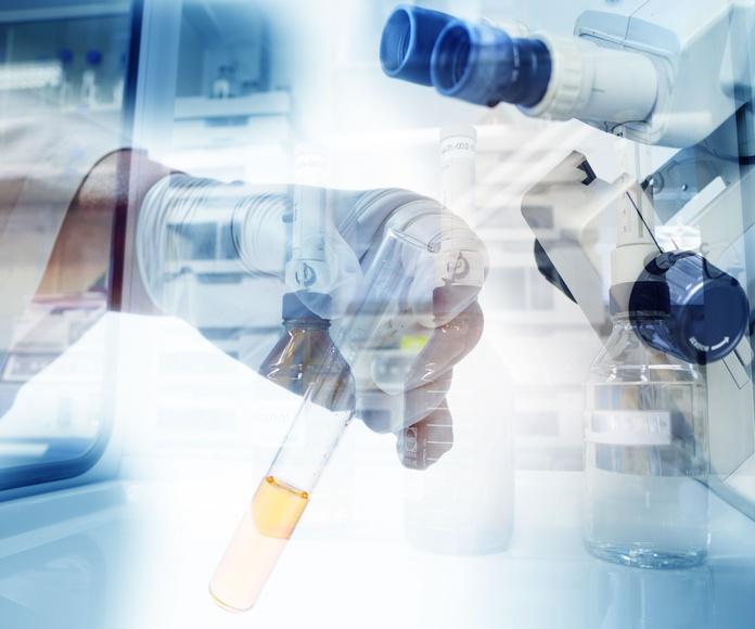 Laboratorio: Especialidades de Clínica Veterinaria San Marcos