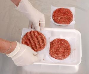 Hamburguesas de todo tipo de carne