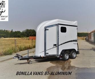 Diagonal cuatro: Modelos de Bonilla Vans