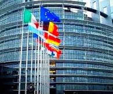 El Parlamento Europeo (PE) y el reconocimiento automático de las adopciones dentro de la UE