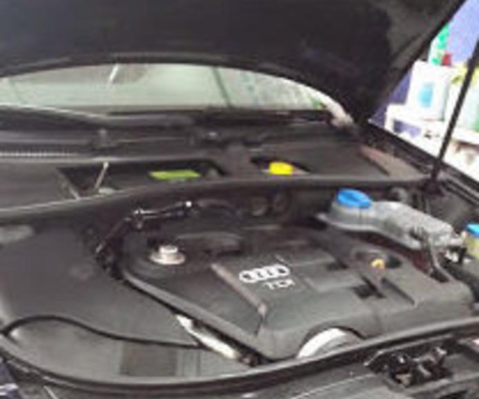 Limpiezas de motores. 30,00€