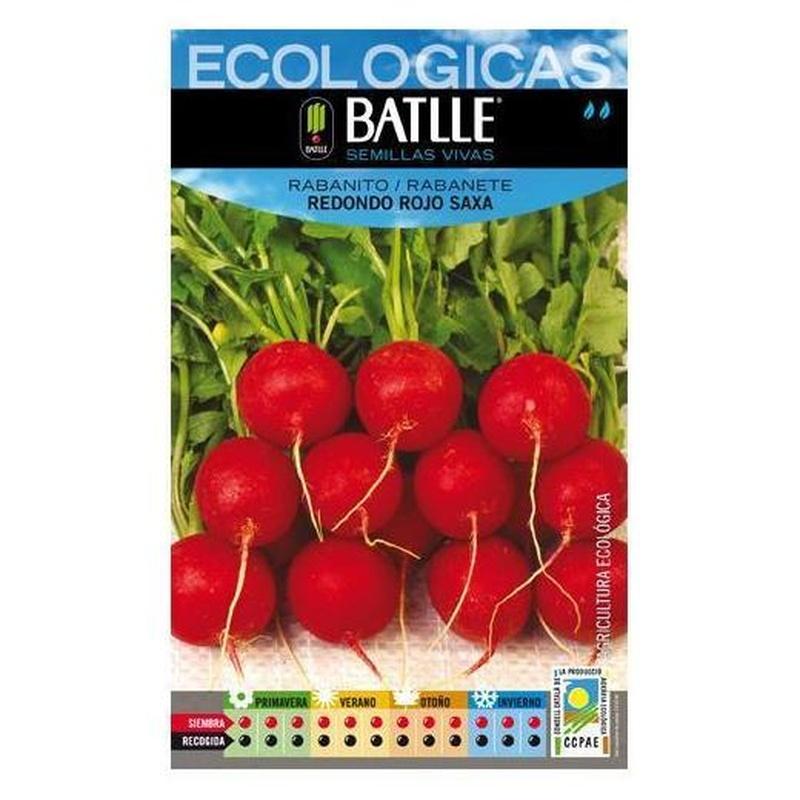 Semillas ecológicas de Rabanito redondo rojo saxa Ref. 14