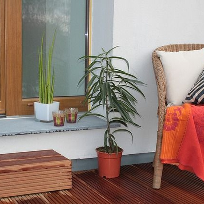 Decora tu terraza con estilo y confort