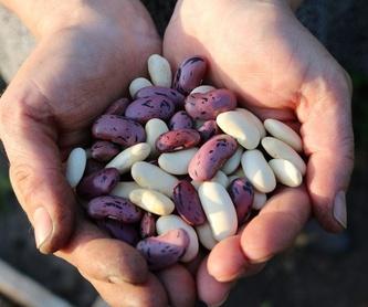 Charcutería: Productos y Servicios de Alimentación Mariluz