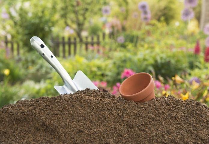 Tratamiento de jardínes: Servicios de Jardinería Román Bernal