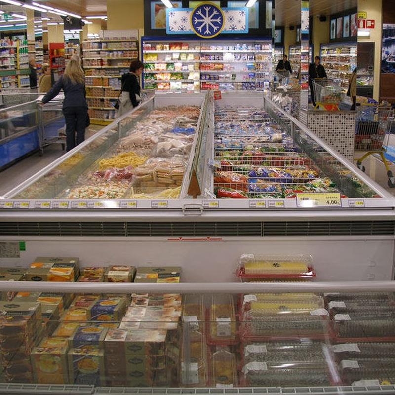 Instalaciones comerciales : Productos y servicios de Instalaciones Frigoríficas Otzlan, S.L.