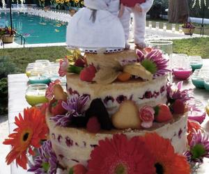 Catalogo de tartas.      Special Cakes to order