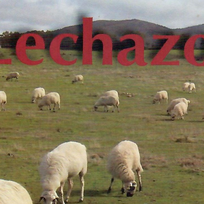 Jornadas gastronómicas de Lechazo. : Hotel y Restaurante de Hotel Restaurante Rural El Roble