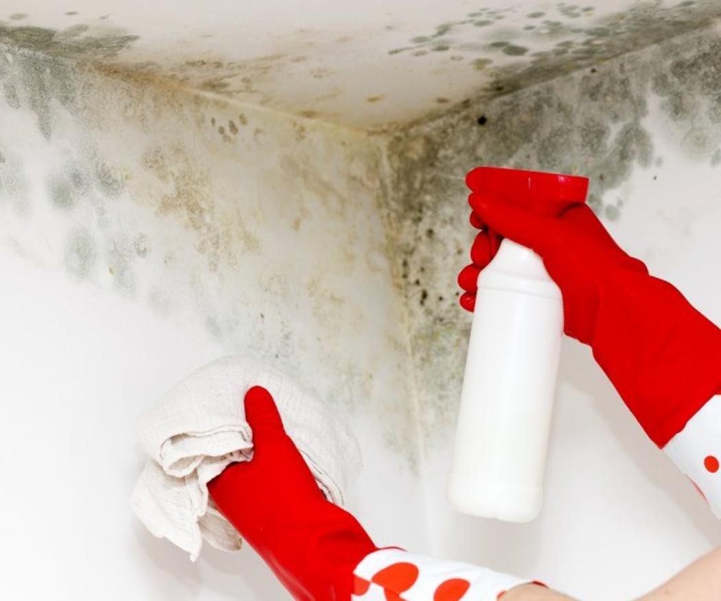 Origen de las humedades en las viviendas